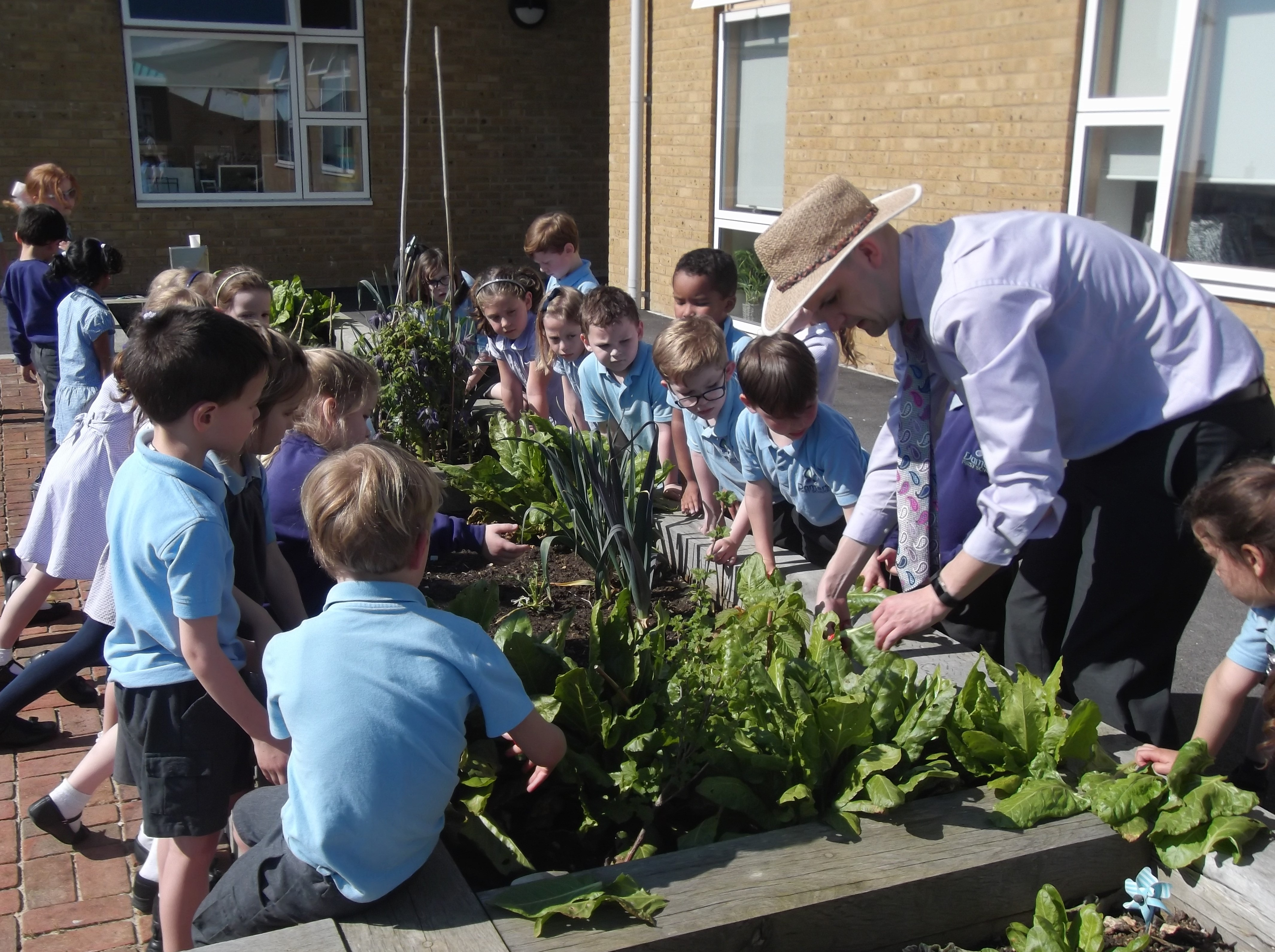 Damers Garden planting